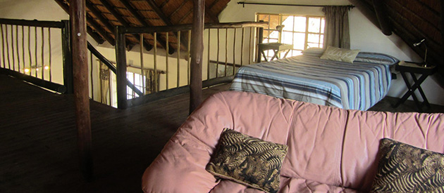 Marloth, game park, Kruger, animals, crocodile river, Komatiepoort, Malelane, conservancy, game drives, house, self catering, cottage, Hyena Hangout