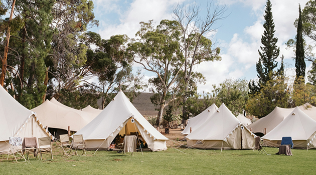 ... Bedouin tent hire Cape Town Marquee and tent hire Cape Town Freeform marquee tent ... & WOLFKOP MARQUEE TENT HIRE - Businesses in