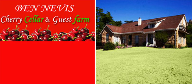 BEN NEVIS CELLAR AND GUEST FARM